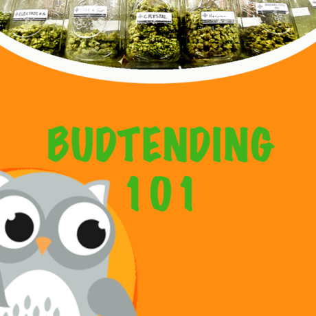 budtender course