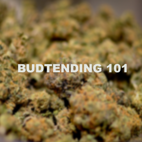 online budtender course