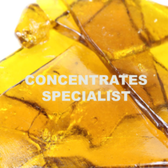 concentrates course