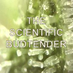 SCIENTIFIC BUDTENDER
