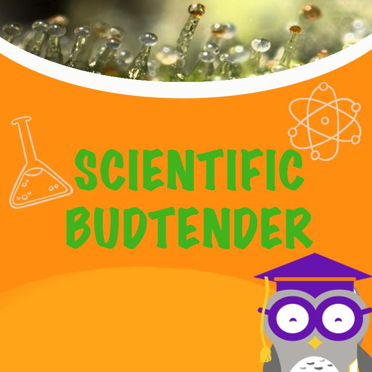 Scientific Budtender Online Course Herbal Risings Career Preparation