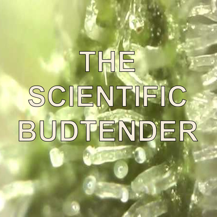Budtender Classes The Scientific Budtender