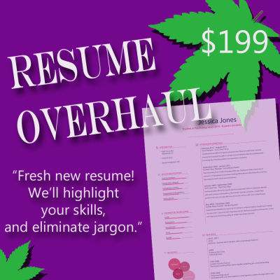 local resume writing services resumestrong things you should not say in a job interview