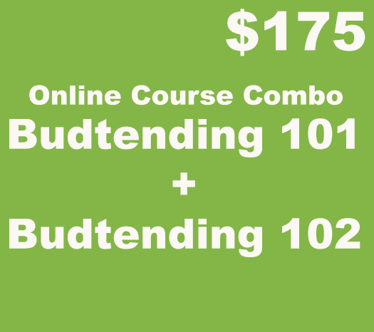 budtender online course