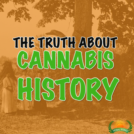 cannabis history with mikel weisser
