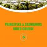 herbal risings career workshop