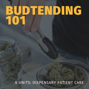 budtending 101 patient care